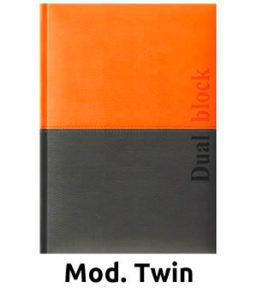 Twin-2